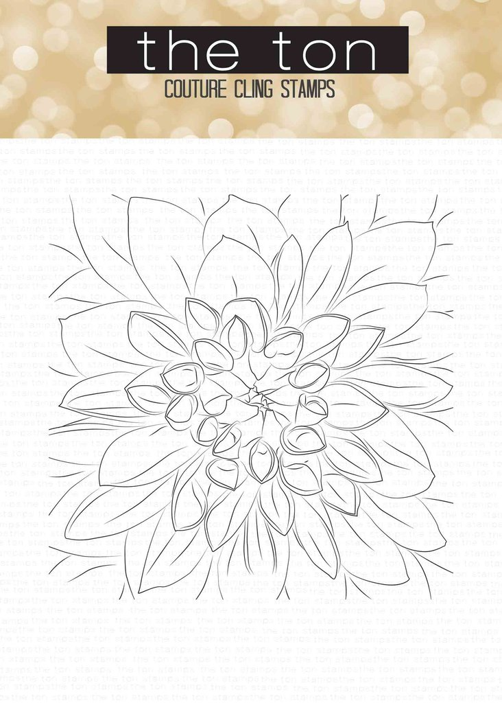 The Ton - Dahlia Close Up Cling Background