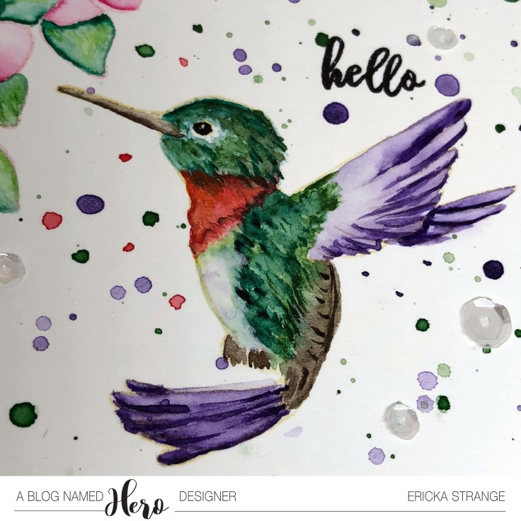 hummingbirdclose