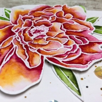 Hero Arts 2018 Summer Catalog Blog Hop (+ Giveaway)