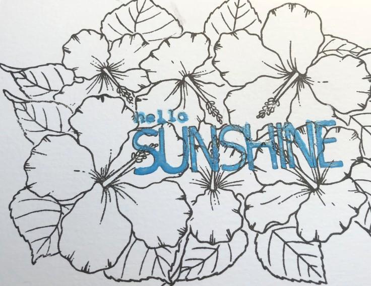 sunshinestarts