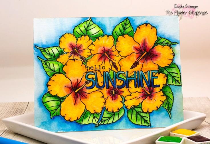 sunshineup