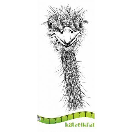 Katzelkraft - Ostrich