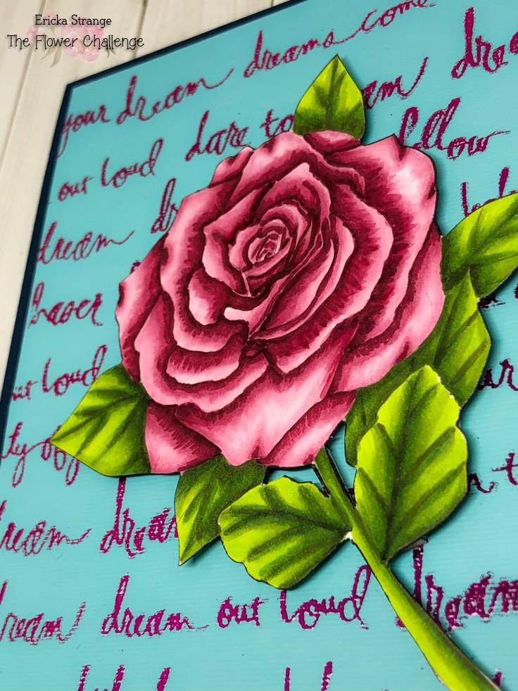 roseside