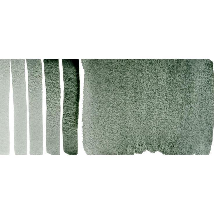 Daniel Smith Watercolors - Rare Green Earth