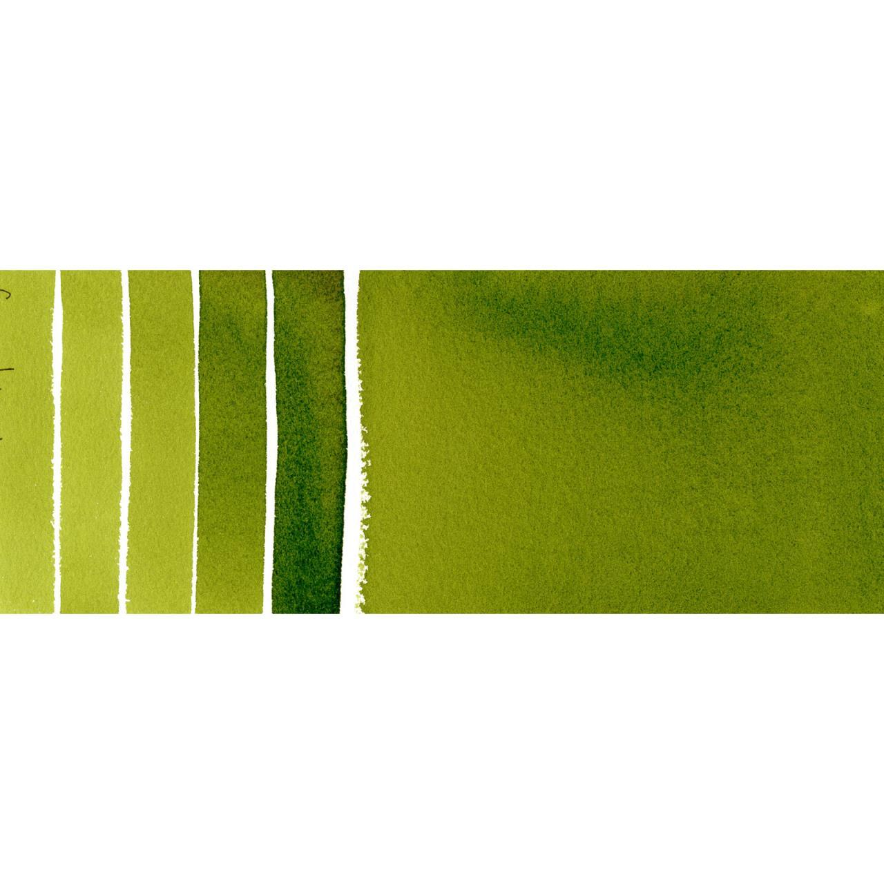 Daniel Smith Watercolors - Sap Green