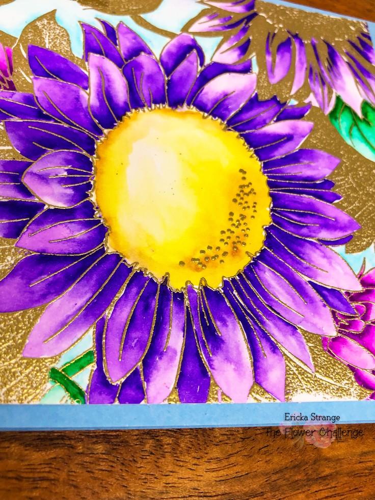 purpleclose