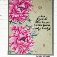 Grey & Pink Blooms