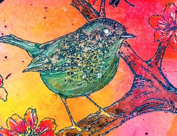 bird2close.jpg