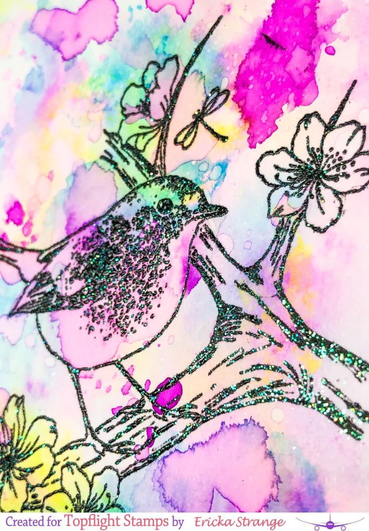 closebird