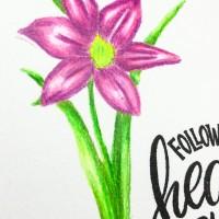Katzelkraft Flower