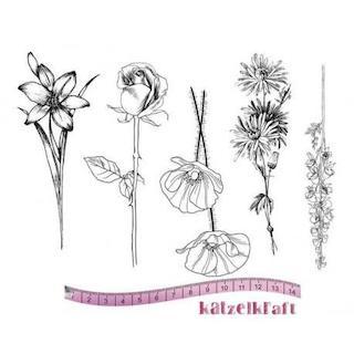 Katzelkraft - Flowers