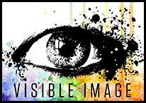 visible-image-2017