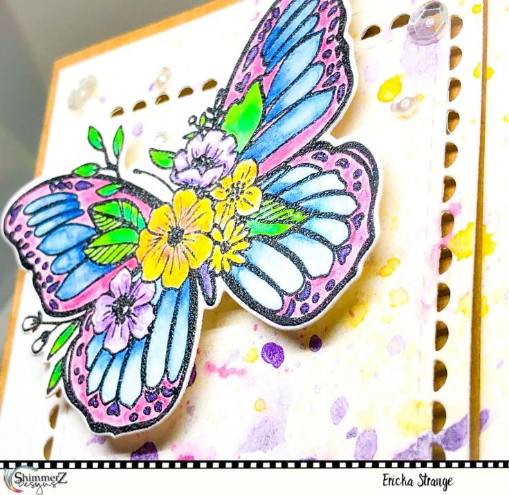 butterflyshine