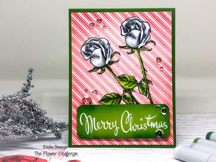 christmasup