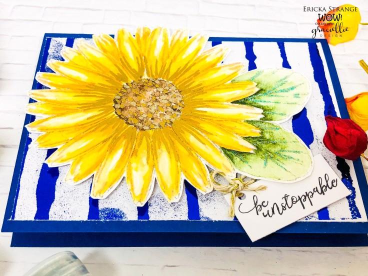sunflowerdown