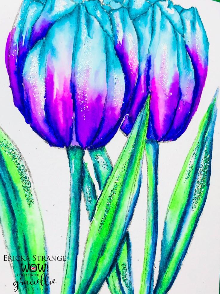 tulipsparkle
