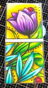 tulipcolored