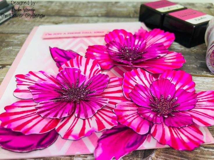 pinkcloseup