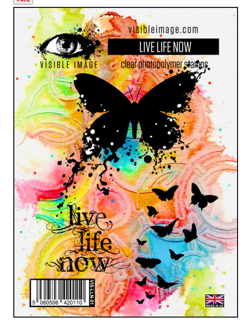 Visible Image - Live Life Now