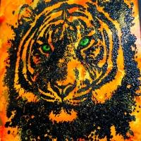 Visible Image Tiger