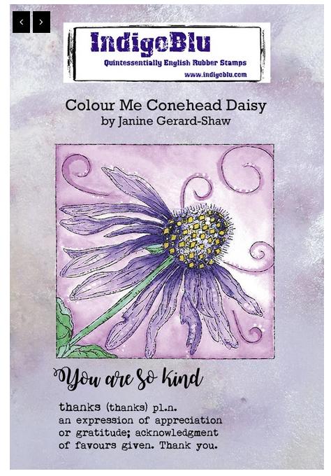 IndigoBlu - Colour Me Conehead Daisy