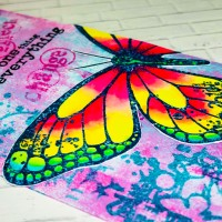 Visible Image Butterfly Effect